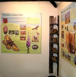 Deer Park Farm - education room