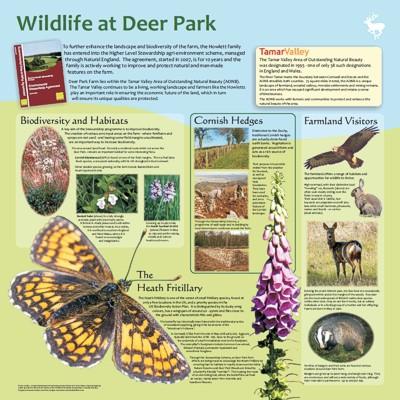 Deer Park Farm - wildlife