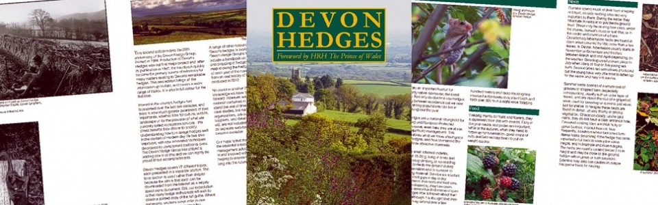 Devon Hedges -98-page book design and lay out by Graphic Words of Tavistock