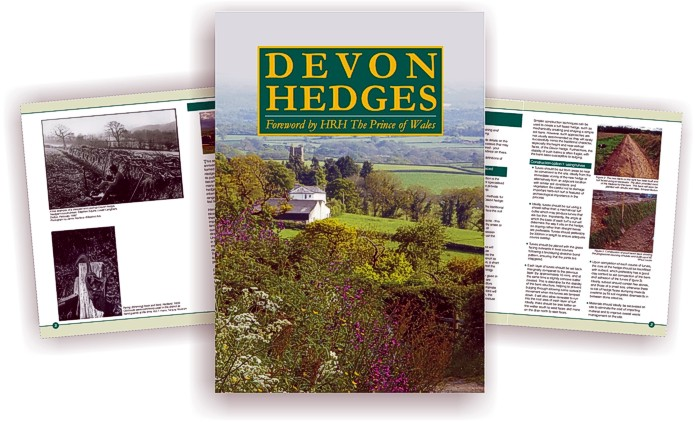 Devon Hedges - book design by Graphic Words
