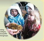 Children on a farm visit at Deer Park Farm, featured on an interpretation panel by Graphic Words